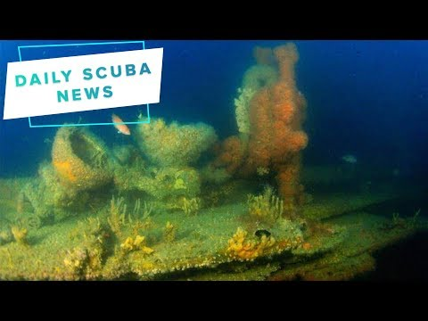 Daily Scuba News – The SS Alert Has Been Looted