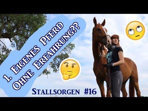 Erstes eigenes Pferd - ohne Erfahrung?? ft. Natalie Horsesteps (Stallsorgen #16)   Serenity Horses