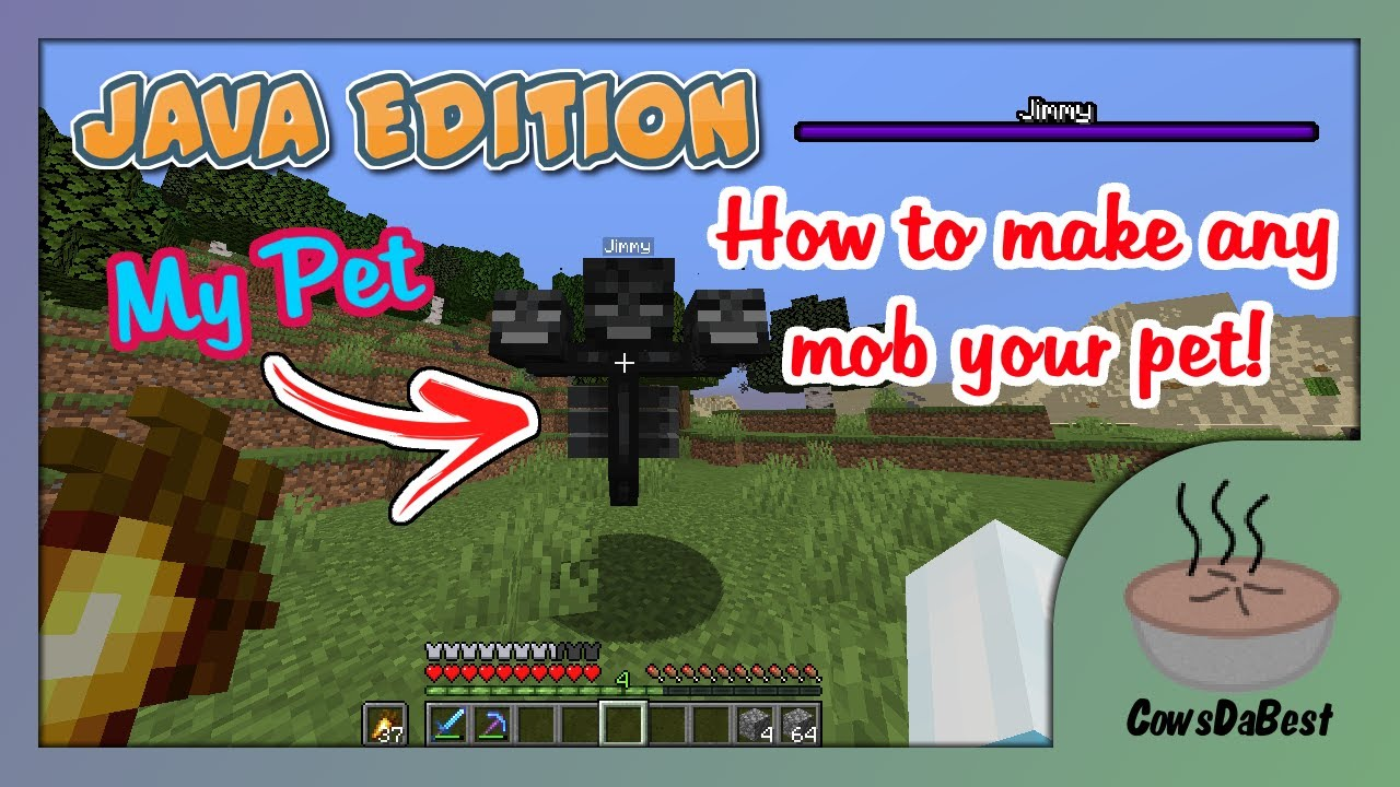 How To Make ANY Mob YOUR Pet! [1.13-1.16 Datapack]