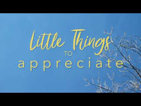 Little Things to Appreciate