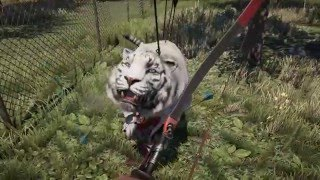 Far Cry® 4 (Ps4) : Mission Simple  + (A Small Zoo)