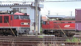 EF510牽引7099ㇾ 秋田貨物駅 解放と連結作業    2019年7月24日