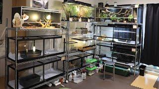 20匹以上の爬虫類をこだわり抜いた環境で飼育するマニアの家が凄過ぎる・・・!
