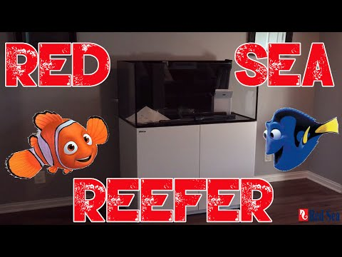 Red Sea Reefer 250 | Tank Reveal | Building Cabinet | Overview