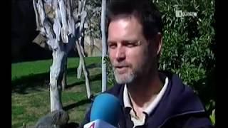 """Noticias Cuatro: """"En Bioparc se adelanta la época de apareamiento"""""""