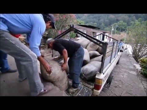 COFFEE BREAK!! with YP.   Guatemala and Organic Sumatra.