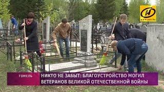 Кампания по благоустройству могил ветеранов Великой Отечественной войны в Гомельской области