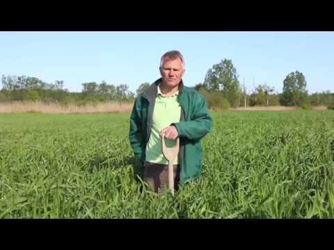 Friedrich Wenz über die Regenerative Landwirtschaft