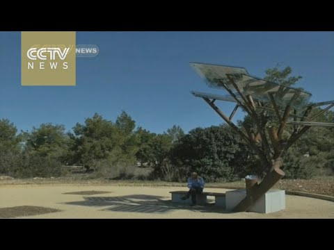 Israeli solar trees destined for China