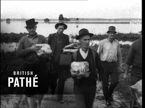 flood-disaster-in-new-south-wales-(1949)