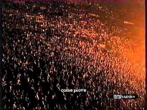 Zucchero - Pane e sale (Live 1995)