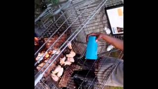 Grill On Wheels: Dudes Throw Down A Bbq On A Shopping Cart! (grilling With An Open Pit Flame)