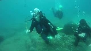 diving Lloret, La Casa del Mar