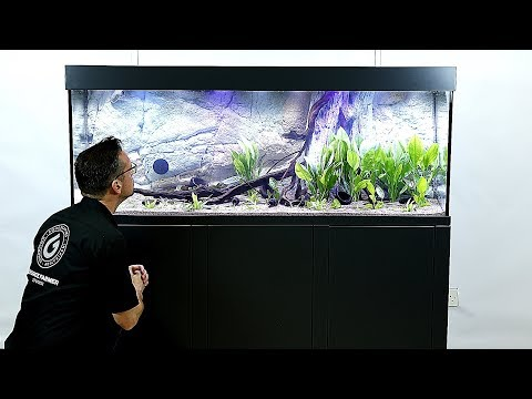 150 Gal. Ultro Aquarium With Back To Nature Background