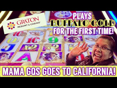 👸🏽🤳🏽🎰 MAMA GQS GOES TO GRATON CASINO & PLAYS BUFFALO GOLD FOR THE FIRST TIME! 🐃🎰