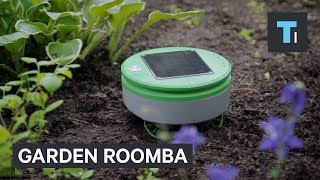 This Roomba for your garden can be your weed warrior