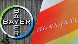 Bayer schluckt Monsanto