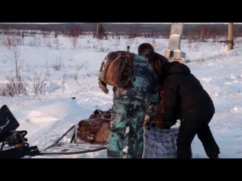 One Year for Jesus Project. Trip to Vorkuta