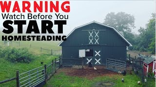 My Warning to All Of You About To Start Homesteading