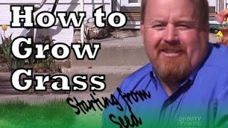 Planting Grass Seed and Patching Your Lawn: How to Choose the Right Seed and How to Grow Grass