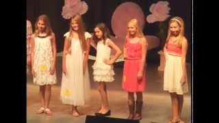 Petite Miss & Junior Miss Pageants - 2014 Williamson County Fair thumbnail