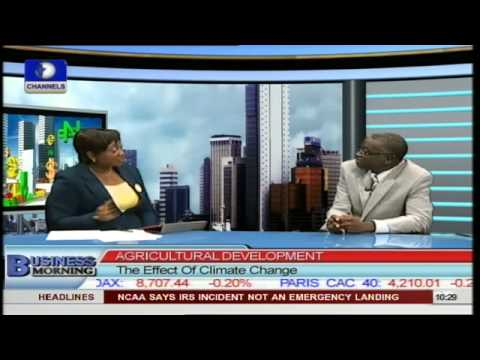 Government Needs To Pay More Attention to Agriculture -- Analyst PT2