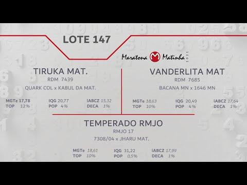 LOTE 147 Maratona Matinha