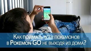 Как поймать всех покемонов в Pokemon GO не выходя из дома?