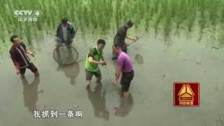 9集系列片《一方水土一方味》(3)乡土食材别样风味  【走遍中国 20150924】720P