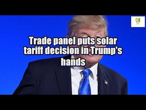 Trade panel puts solar tariff decision in Trump's hands