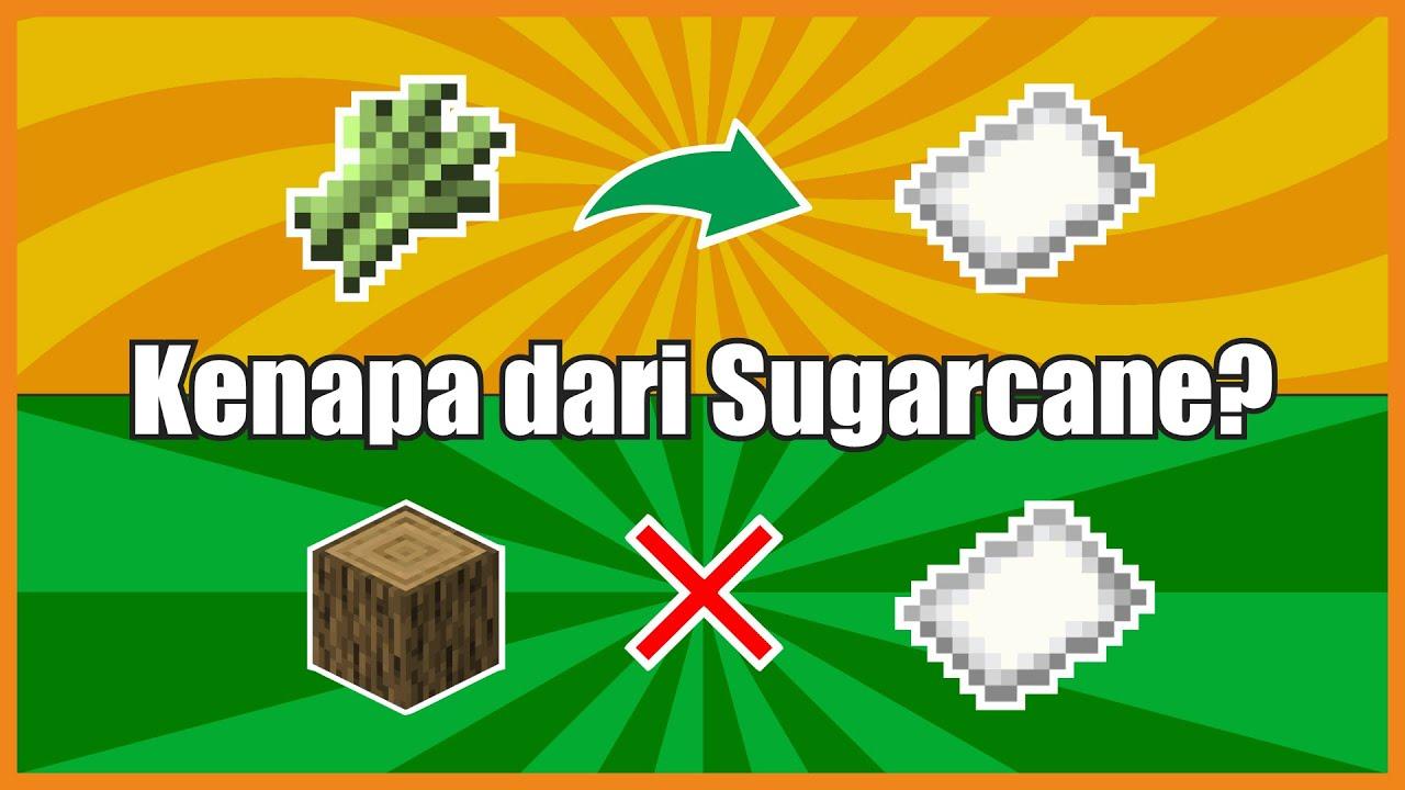 Kenapa Paper Minecraft dari Sugarcane? #shorts