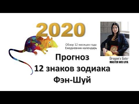 Прогноз 2020 на год Белой Крысы.12 знаков китайского зодиака. Обзор года и месяцев. Фэн-Шуй домов.
