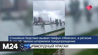 """Москва и мир"": Ефремов признал вину в ДТП - Москва 24"
