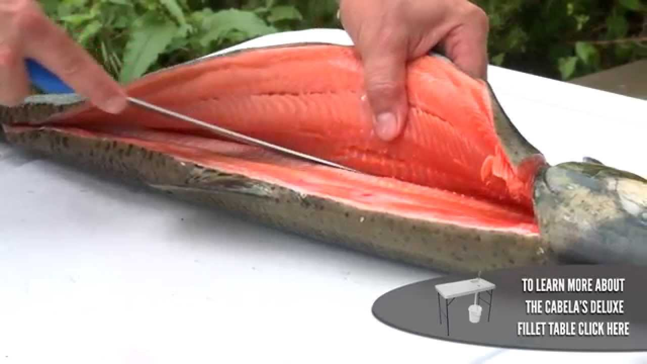 How To Fillet A Salmon Youtube