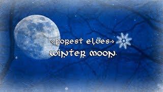 Forest Elves - Winter Moon【Erutan Cover】