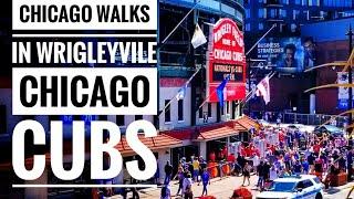 Chicago Walking Tour to Wrigley Field
