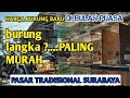 Harga Burung Langka Tapi Murah Di Pasar Burung Kupang Surabaya Jatim  Mp3 - Mp4 Download