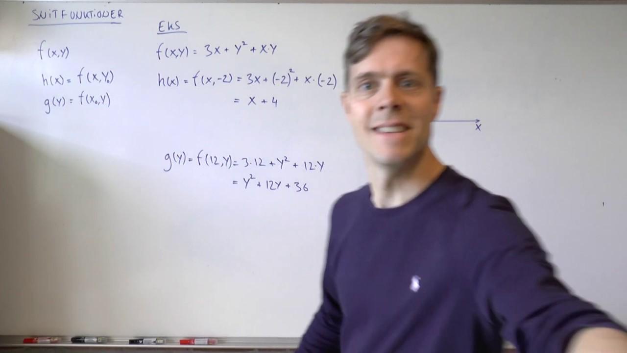 Snitfunktioner - funktioner af to variable