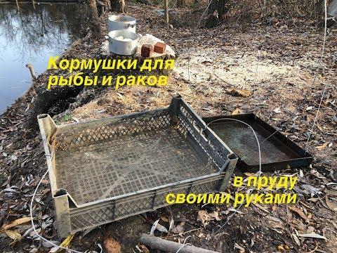 Кормушки для рыбы и раков своими руками в пруду на дачном участке (на даче). Разведение рыбы и раков