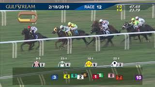 Gulfstream Park February 18, 2019 Race 12