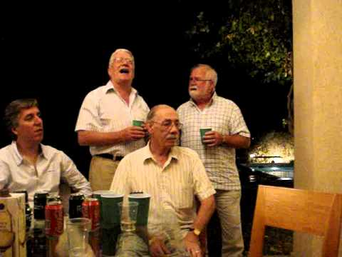 The Parting Glass sung in Cyprus on the night before the Republic of Ireland Game in 2009