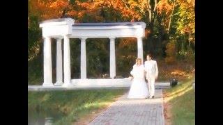 Свадьба Золотаревых (клип 2)