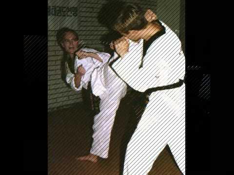 Tae kwon do kicks - 2 part 4