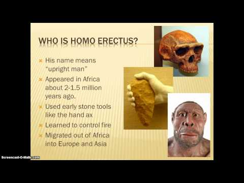 Hominids:Ancestors of Modern Man