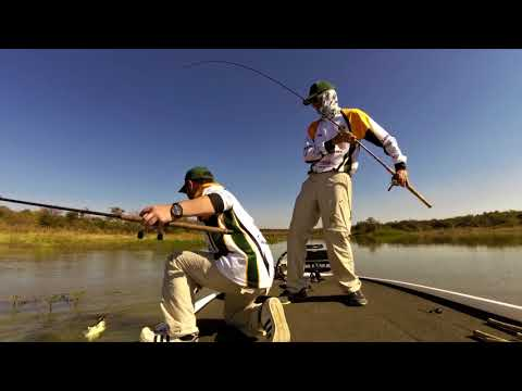 South African Protea Bass Angling Team at the 2017 AFU Region 5 Championships