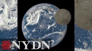 NASA reveals