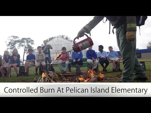 Pelican Island Controlled Burn Demo