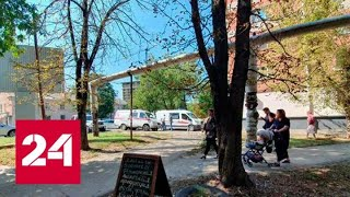 В Краснодаре скончалась девочка, на которую упало дерево в детсаду - Россия 24