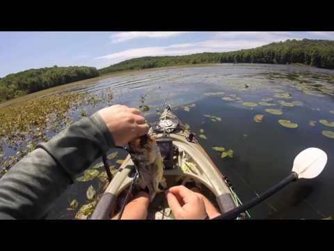 Froggin' at Lake Arthur