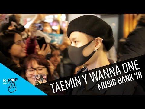 Llegada de Taemin y Wanna One a Music Bank en Chile | K-Pop Match
